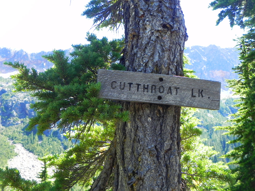 cutthroat lake sign hike north cascades
