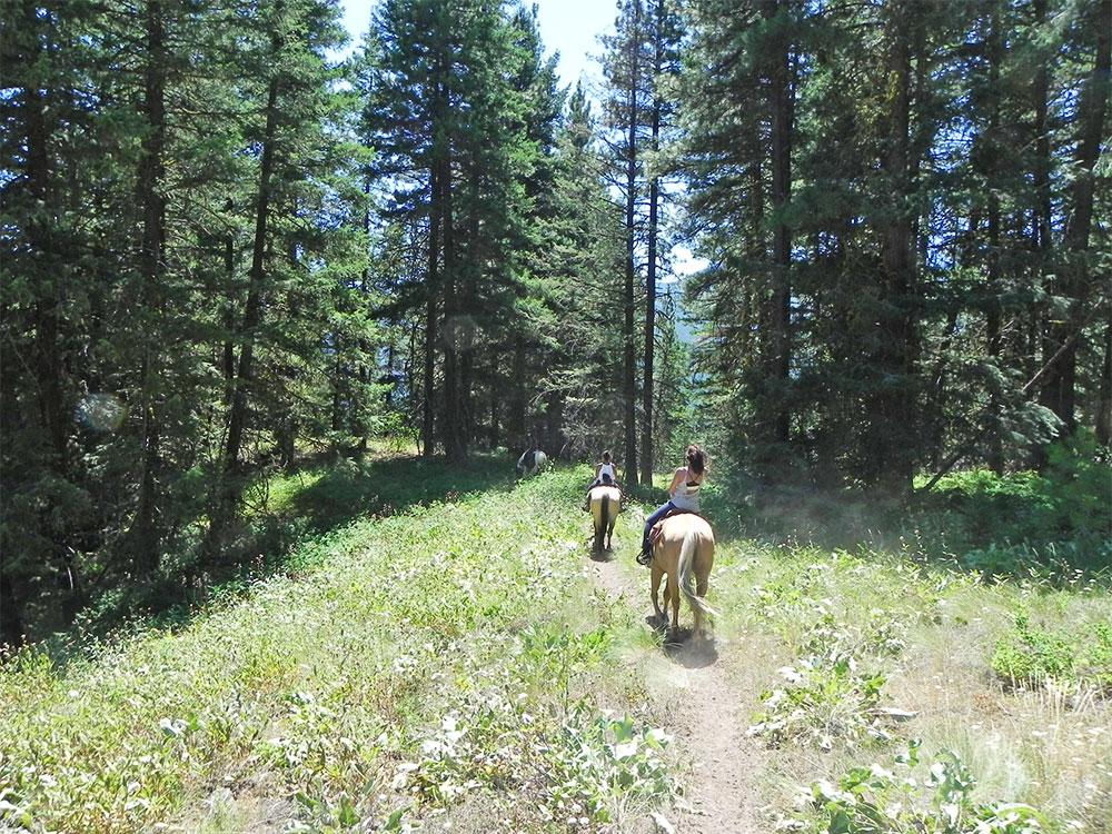 early winters horseback mazama